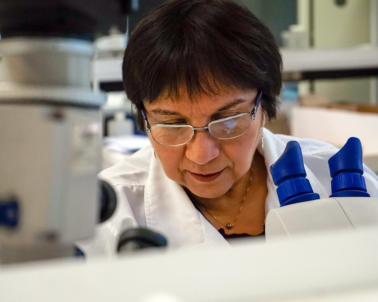 Descubren propiedades de líquenes con potencial en área médica y en la actividad agrícola