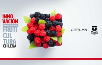 Seminario: Innovación y productividad en la fruticultura chilena