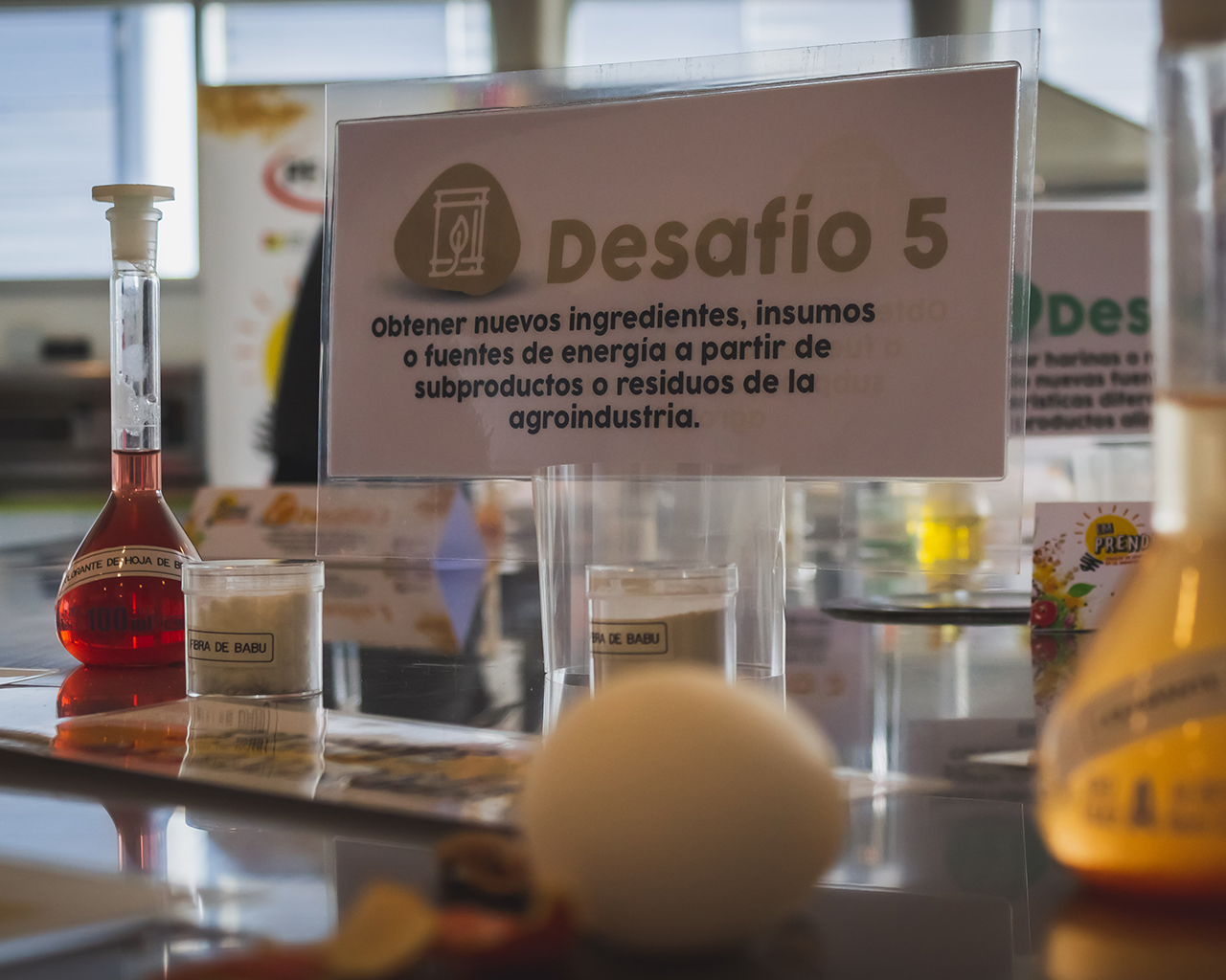 Hub Alimentos-UTalca lanza desafío de innovación en la industria alimentaria