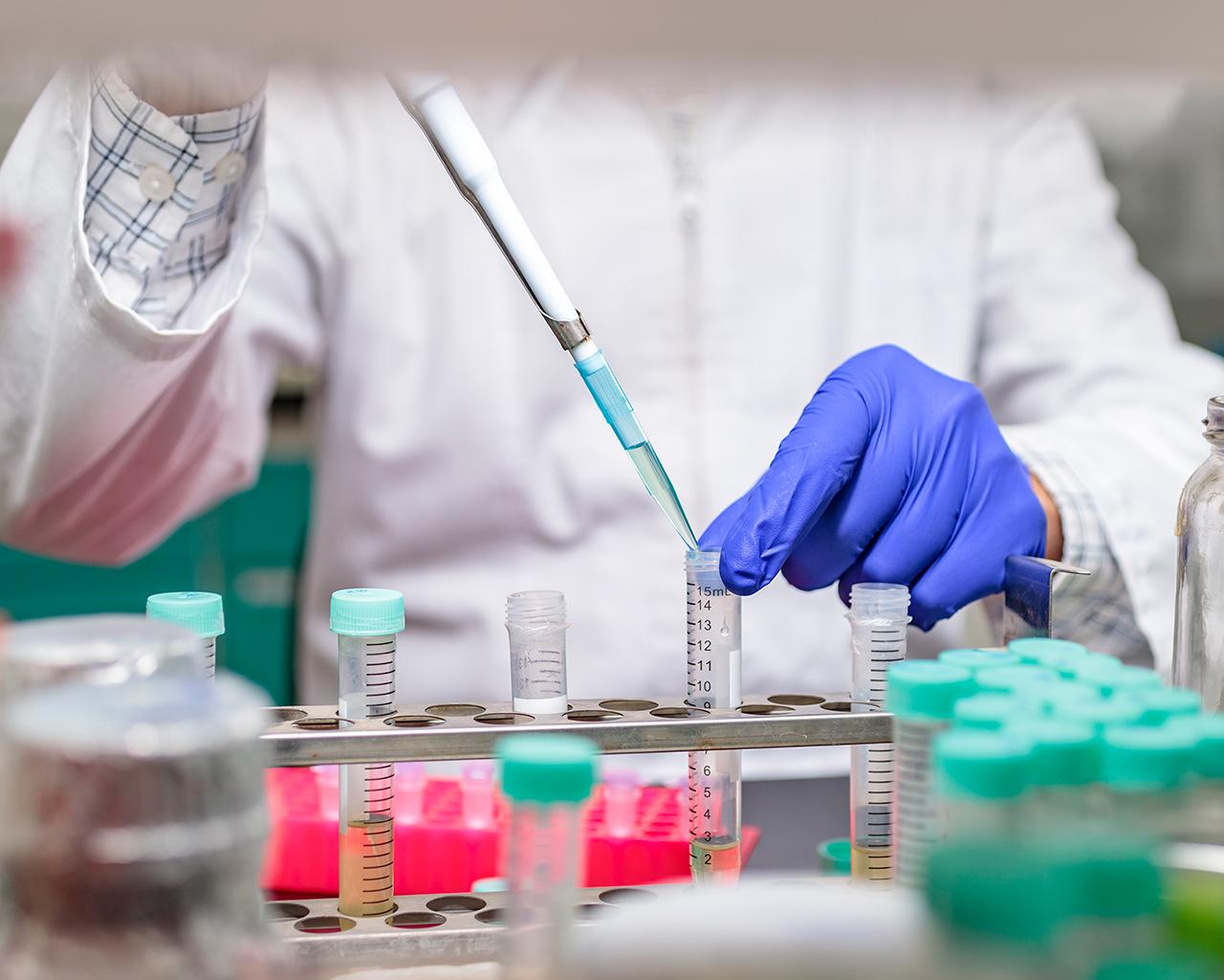 Cinco académicos se adjudican concurso Fondecyt Postdoctorado
