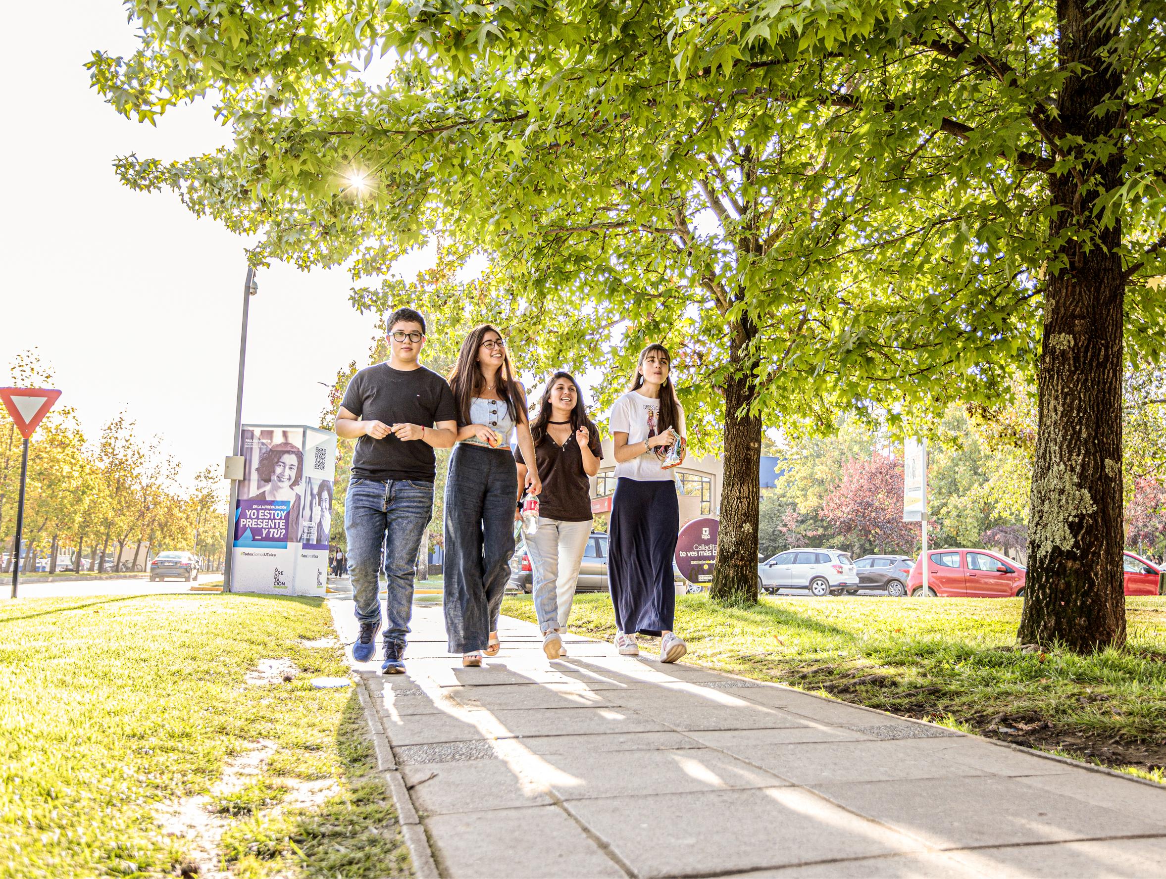 UTalca  tendrá admisión especial para talentos en historia, geografía y ciencias sociales