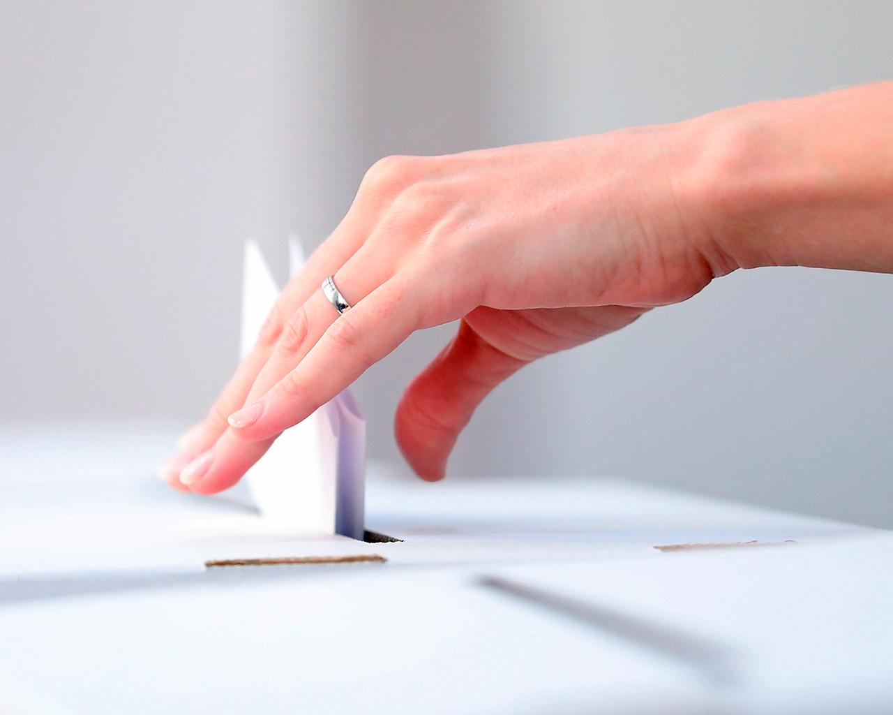 ¿Puede el voto femenino definir el resultado de una elección? Estudio analizó brecha de género en participación electoral