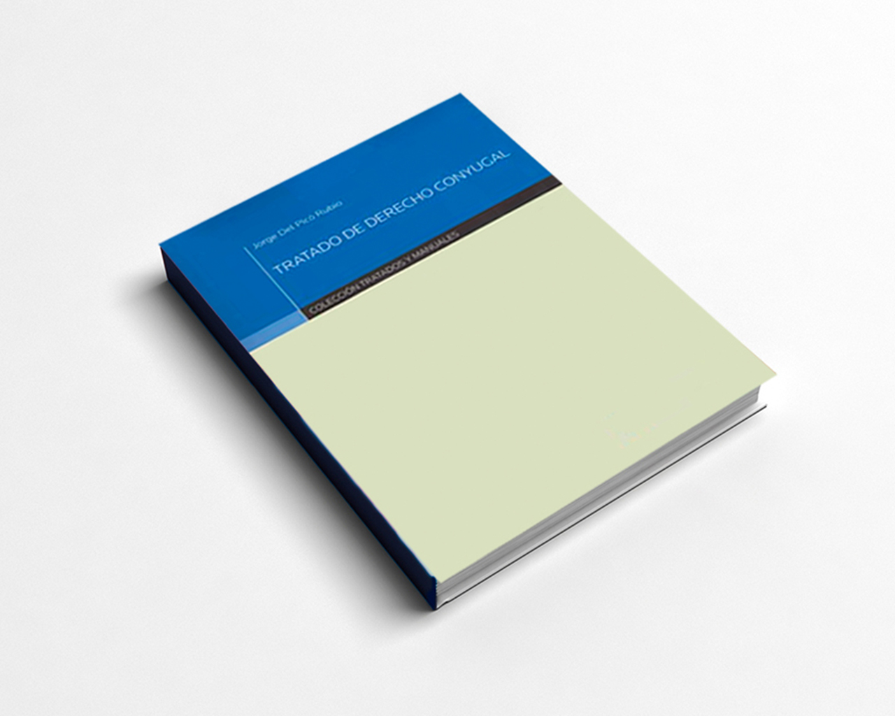 Libro analiza afectividad en el derecho conyugal