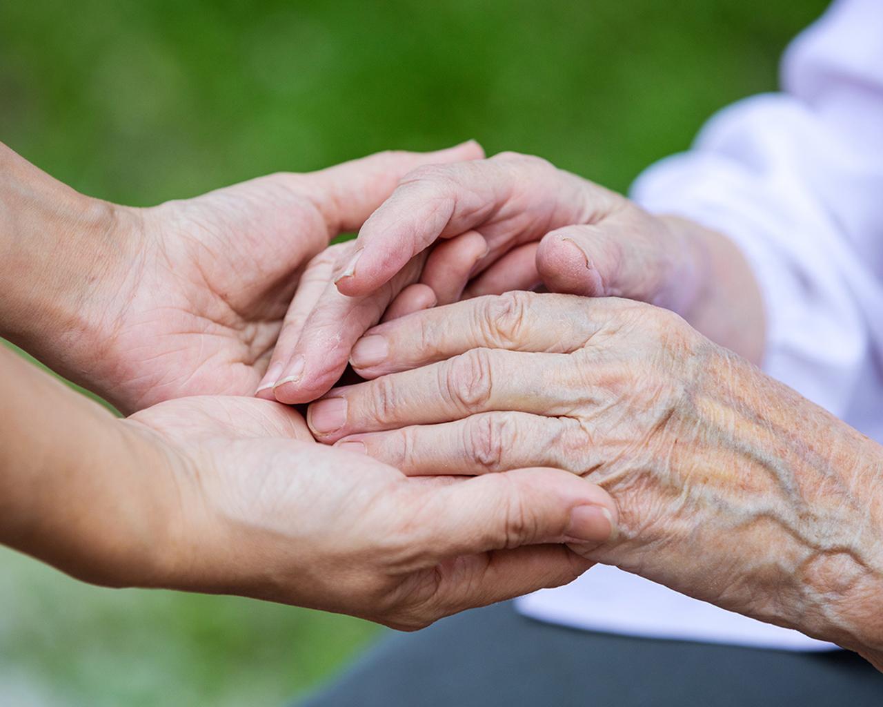 Red de Envejecimiento realizó positivo balance