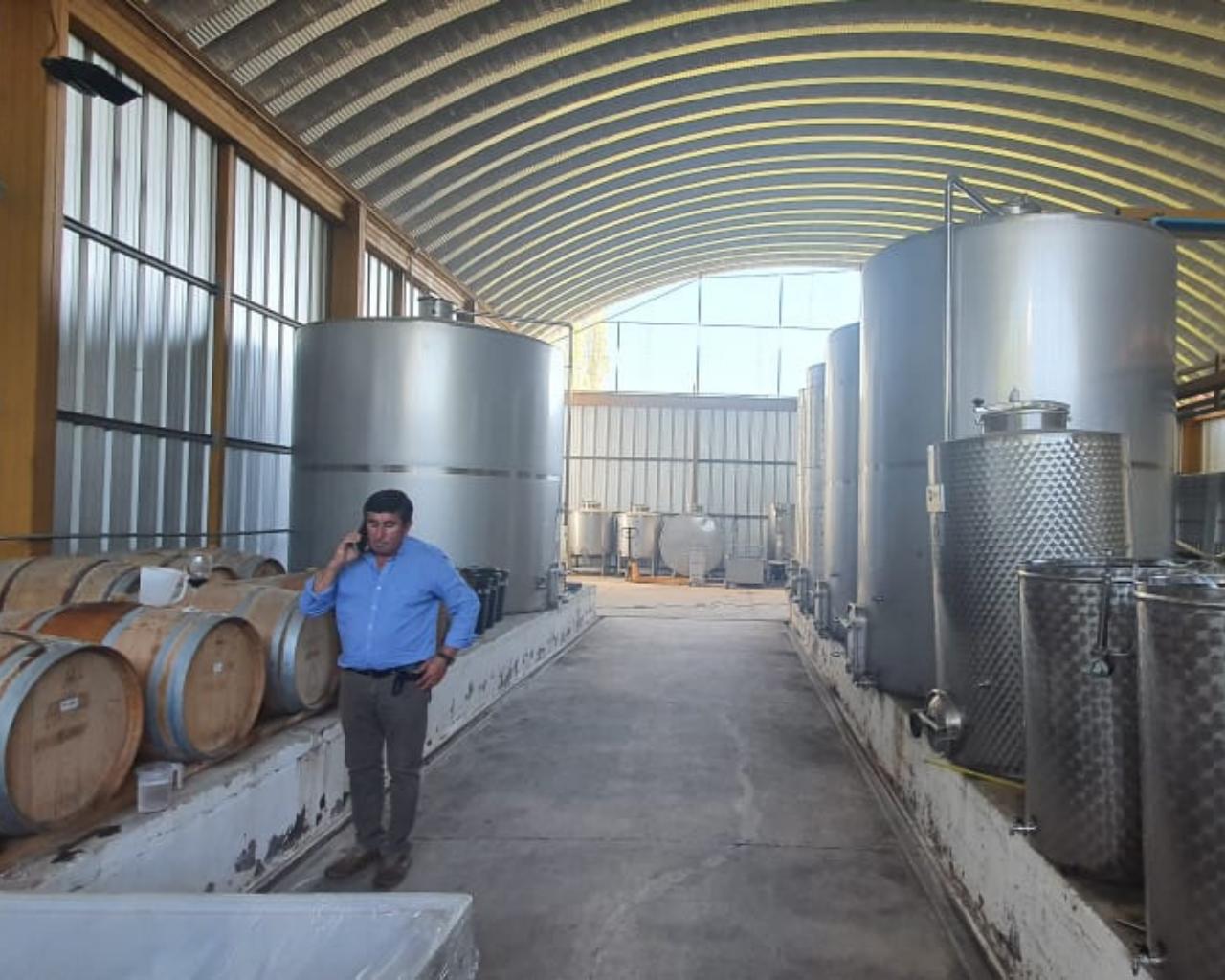 Estudiantes asesoran a agricultores para mejorar la producción de vinos