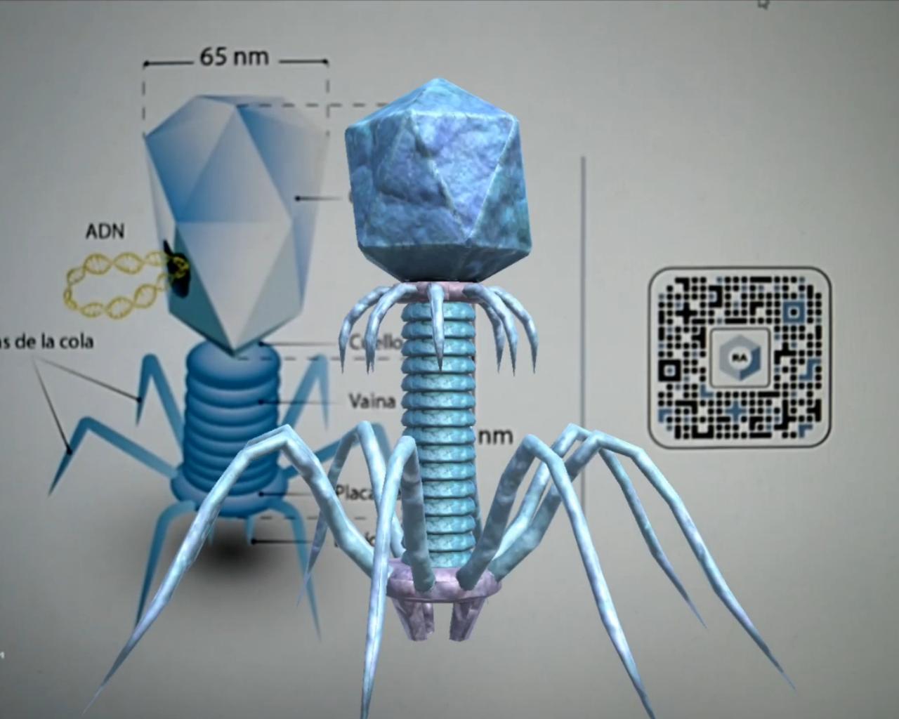 Proyectos buscan enseñar microbiología de una manera sencilla y dinámica