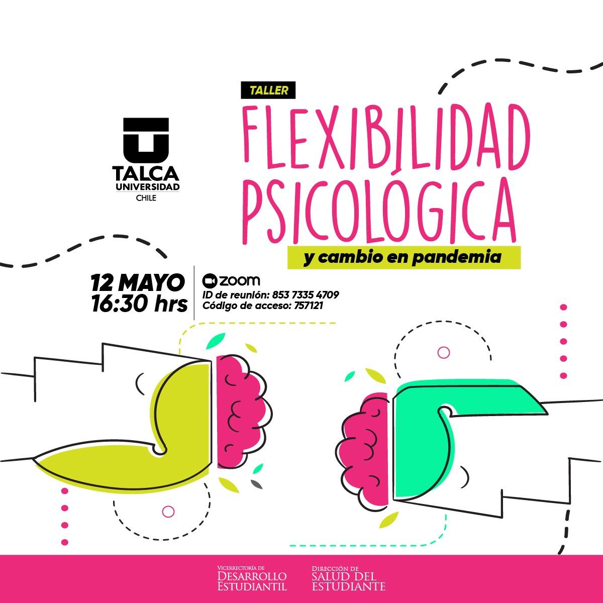 Taller Flexibilidad Psicológica y Cambio en Pandemia