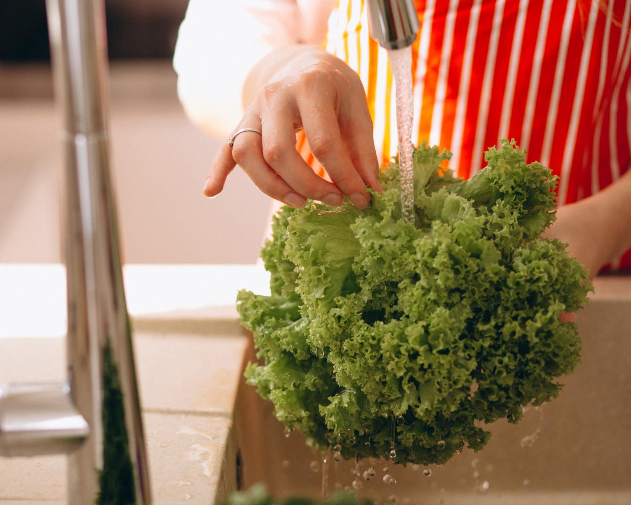 Académica convoca a todos los actores a garantizar la inocuidad de los alimentos
