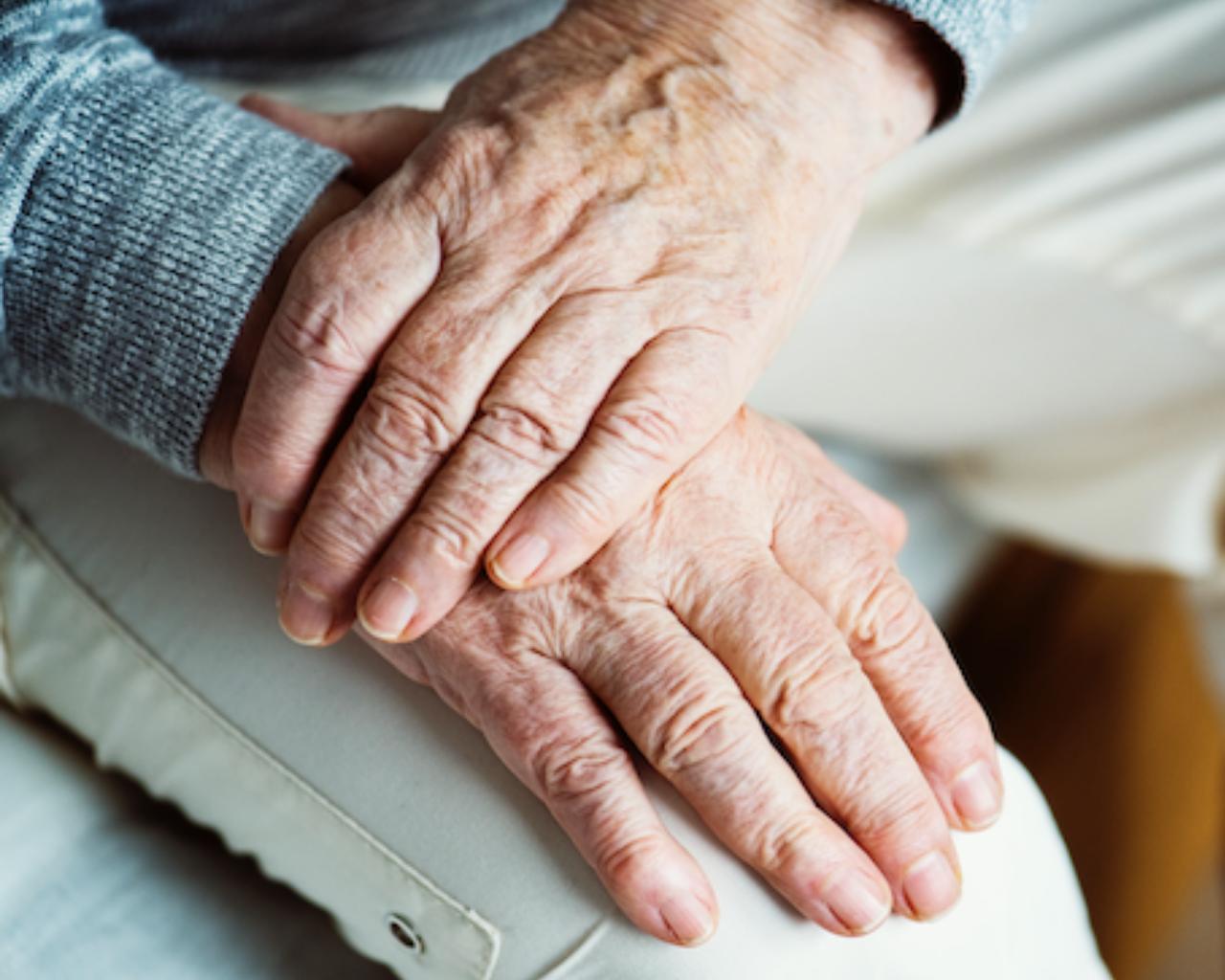 Expertos debaten sobre la protección a personas mayores en una nueva Constitución