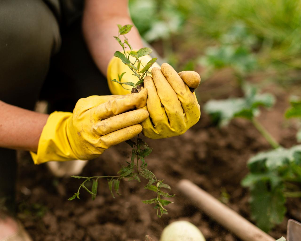 Revisan experiencias de la industria agroalimentaria y su transformación hacia la economía circular